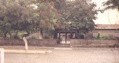 No Ano de 2008 a Escola Estadual do Ensino Fundamental e Médio Monsenhor José Borges de Carvalho do município de Alagoa Nova PB completou meio século de ...