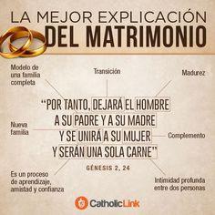 """Septiembre es el mes de la Biblia y, al acercarse el Sínodo de la Familia, queríamos recordar la riqueza e importancia de la vocación al matrimonio, en el cual, como dijo Benedicto XVI: """"el hombre y la mujer se encuentran mutuamente y así encuentran también al Creador que los llamó al amor""""."""
