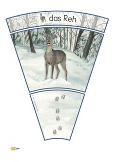 KiGaPortal - for pre-K, kindergarten and elementary school Arctic Animals, Forest Animals, Animal Footprints, Fox Squirrel, Snow Forest, Woodland Party, Teaching Kids, Winter, Education