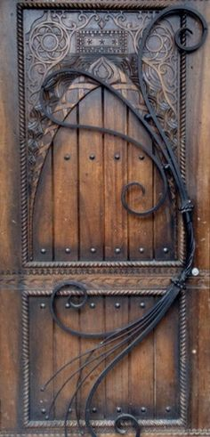 Beautiful wood door with wrought iron accents.