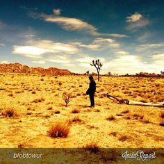"""@pictacularapp's photo: """"Just added @Justin Vernon to the music channel on our app pictacular.co! #music #boniver #towers #billboardcharts #deserts #summer"""""""