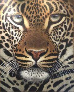 leopard art work | Leopard Portrait by South African Artist David Bucklow | Fine Art ...