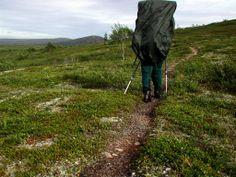 Rinkka nousee rinnetta - Muotkatunturit - Vaellus kesällä 2002
