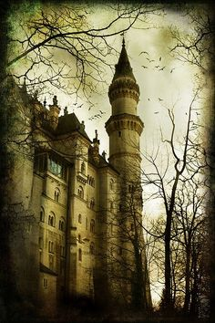 Neuschwanstein Castle, Bavaria, Germany.I want to go see this place one day.Please check out my website thanks. www.photopix.co.nz