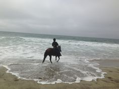 Riding At The Beach, California Beaches, Young Rider and Her Horse #HorseColicSymptomsFree http://www.loveyour.horse