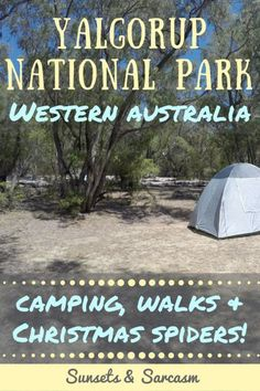 What to do in Yalgorup National Park, Western Australia, an easy trip from Perth: visit the ancient Lake Clifton thrombolites, go camping at Preston Beach, follow woodland walking trails, see plenty of Australian wildlife & possibly Christmas spiders!