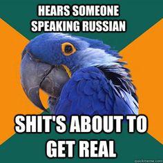 Hahaha! Paranoid Parrot !