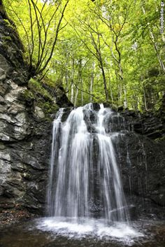 Greece is not only sea and sunset! Almost 80% covered by mountains! Here is the Partheno Dasos (Virgin Forest) in the borders of Xanthi and Drama prefecture. #forest #waterfall #Greece #drama #xanthi #nature #water #tree #green #rock #Virgin #Frakto #Paransesti