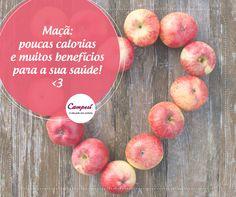 A maçã, além de deliciosa, traz muitas vitaminas pra você! Ela é rica em vitamina C, fibras e ainda ajuda a reduzir o colesterol. Quer mais? Ela é super prática para levar de lanche para o trabalho! #dicaCampesí