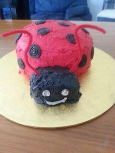 Lady beetle smash cake