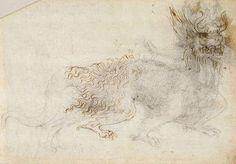 дракон фрагмент Леонардо да Винчи