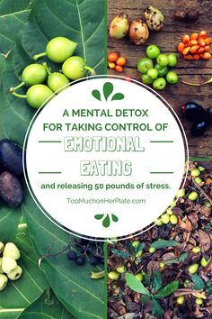Not about food! This is a mental detox for taking control of emotional eating and stress. From http://toomuchonherplate.com