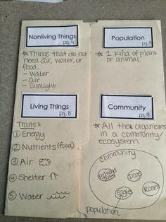 I Love My Classroom: Tried it Tuesday: Showing Off My Folders - Ecosystem Folder