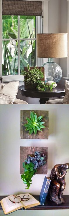 Little planter, big impact! Our mini living wall planters are charming and add an unexpected accent to indoor space. Arrange them on your tablescape or wall!