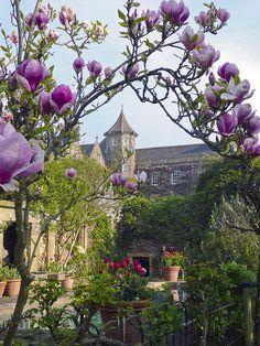 Hanham Court Garden,South Gloucestershire,England