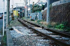 江ノ島でのんびり散歩がしたいのです。
