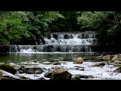 RELAXING SOUNDS FOR SLEEPING-Water Flowing-Waterfall Sound-Bird Song Noises-Nature Sounds
