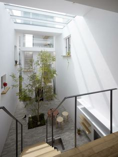 Located in Tokyo, Japan. This modern townhouse was designed by Mamm Design which has a beautiful central indoor courtyard under a large glass skylight to create a feeling of relax Interior Garden, Interior And Exterior, Interior Design, Interior Decorating, Contemporary Architecture, Interior Architecture, Indoor Courtyard, Courtyard Gardens, Internal Courtyard