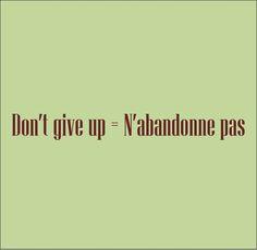 N'abandonne pas ~