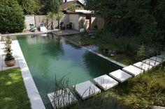 Schwimmteich selbst bauen zonen teilung vegetation design