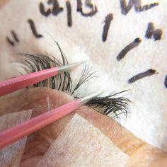 Nagaraku New Professional Bloom Tweezers Volume Fans Tweezers Professional High-quality Beauty Tweezers Mink Eyelashes Extension Beauty & Health