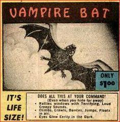 Vampire Bat - It's Life Size!