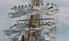 Crew members furl the sails on the US Coast Guard Cutter Eagle when it arrives at Fort Trumbull, New London, Connecticut at the conclusion of the Parade of Sail on Day 2 of OpSail 2012. The Eagle, originally a German ship, came to the US as part of war