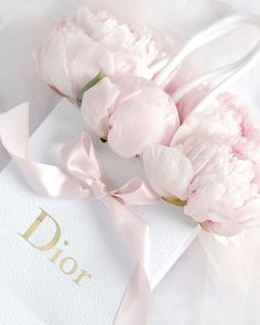 decor shop Dior art illustration photography print pink designer home decor floral pretty shopping bag Rose Pastel, Pretty Pastel, Beautiful Flowers, Pink Wallpaper, Iphone Wallpaper, Wall Collage, Wall Art Prints, Princess Aesthetic, Flower Aesthetic