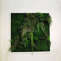 Moss Art, Lady Jane, Wall Design, Architecture Design, Diy And Crafts, Crafty, Floral, Nature, Green Roofs