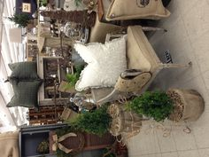 Nov., 2012 - boxwoods, handmade burlap down pillows, painted cane-back chairs - Scott Antique Market
