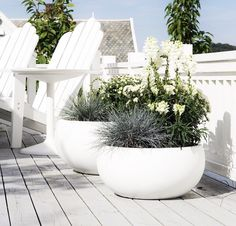 Garten Generous, curvy planters, green arrangements and adirondack chairs, refreshing cosiness How C