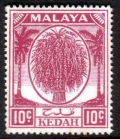 Malay State of Kedah 1950 SG 82 Sheaf of Rice Fine Mint SG 82 Scott 69 Other British Commonwealth Empire and Colonial stamps for sale Here