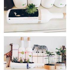 WOW! Tolle #upcycling Idee von #oright Produkten. Und was machst du mit den leer... - #den #du #Idee #leer #machst #mit #oright #Produkten #RecyclingvonProdukten #Tolle #und #Upcycling #von #WOW Reduce Reuse Recycle, Creative, Recycling Logo, Table Decorations, Design, Home Decor, Green Ideas, Upcycling Ideas, Amazing