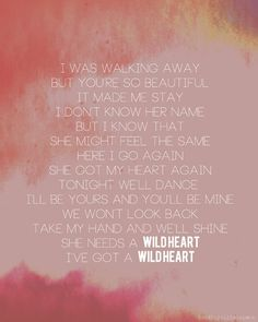 Wild heart, The Vamps
