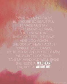 Wild heart, The Vamps