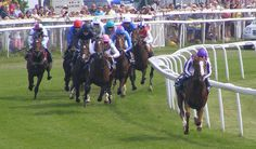 Free Racing Tips For Today : Oaks Analysis