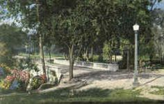 Scene In Cameron Park, Cameron Park