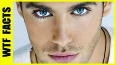 Top 10 Most Handsome Men in the World | WTF FACTS
