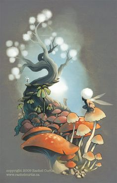 Mushrooms by ~RachelCurtis on deviantART