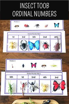 This is a Montessori-inspired learning activity designed to go along with the Safari Toob Insect educational toob toy. This is designed for preschoolers, prek, kindergarten and first grade students and perfect for Montessori environment.      20 Insect Toob Printable Learning Activities that covers science, math, literacy/language and fine motor skills.  #safaritoob #math #science #centers #literacy Earth Science Activities, Science Centers, Kindergarten Math Activities, Preschool Science, Kids Learning Activities, Science Experiments Kids, Math Literacy, Science Chemistry, Science Education