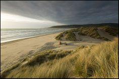 Ynyslas Beach, Borth.