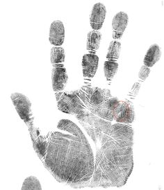 """If you have four or more parallel lines under your pinkie finger, running towards your pinkie (little finger), you are what is known as a """"gifted healer"""". You can see that this looks like here. Also scroll to bottom of the post for a hand print example.) Essentially, this is the mark of the personal…"""