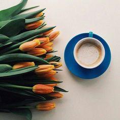 Coffee and friends   ᘡℓvᘠ □☆□ ❉ღϠ □☆□ ₡ღ✻↞❁✦彡●⊱❊⊰✦❁ ڿڰۣ❁ ℓα-ℓα-ℓα вσηηє νιє ♡༺✿༻♡·✳︎· ❀‿ ❀ ·✳︎· FR DEC 13, 2017 ✨ gυяυ ✤ॐ ✧⚜✧ ❦♥⭐ ♢∘❃ ♦♡❊ нανє α ηι¢є ∂αу ❊ღ༺✿༻✨♥♫ ~*~ ♆❤ ♪♕✫❁✦⊱❊⊰●彡✦❁↠ ஜℓvஜ