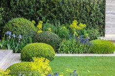#Chelsea Flower Show 2014, Del Buono Gazerwitz, The Telegraph #Garden