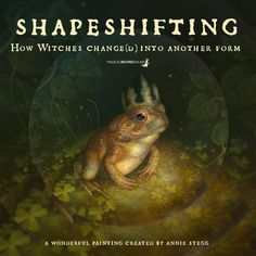 How Witches Change(d) into another Form - Magical Recipes Online Witchcraft Spell Books, Magick Spells, Wiccan, Witch Apps, Traditional Witchcraft, Black Magic Spells, Evil Witch, Eclectic Witch, Modern Books
