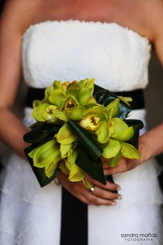 green orchids... perfect with a black and white color scheme