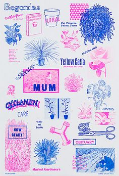 CCOOLL Poster Show - Complete Collection | Issue Press - Artist Publications & Risograph Printing
