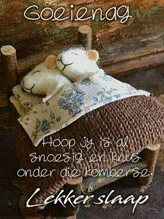 Afrikaanse Quotes, Goeie Nag, Good Night Quotes, Special Quotes, Flower Art, Qoutes, Teddy Bear, Winter, Amen