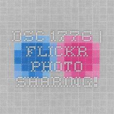 DSC_1776   Flickr - Photo Sharing!