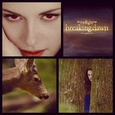 Vampire Bella wants that deer blood! Watch the Breaking Dawn Part 2 trailer here: eonli. Twilight Breaking Dawn, Breaking Dawn Part 2, Twilight Photos, You Are My Life, Twilight Series, Great Love Stories, Fantasy Romance, She Is Gorgeous, Strong Love